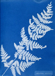 10310400