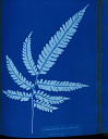 10310413