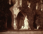 10468631
