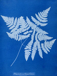 10310437