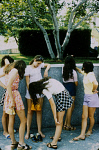 10415149
