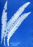 10301550
