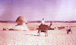 10455860