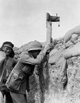 10309469