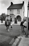 10307775