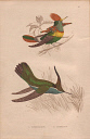 10567894