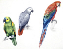 10578271