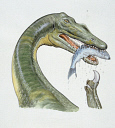 10584258