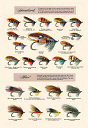 10600355