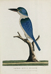 10419171