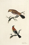 10423574