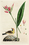 10423588