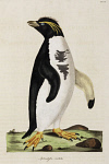 10423599