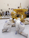 10647898