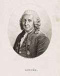 10400486