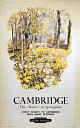 10170646
