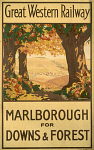 10170664