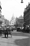 10309494