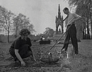 10319790
