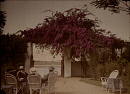 10472617