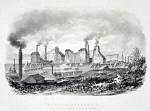 10307231