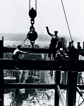 10315976