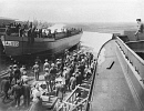 10624296