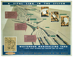 10174117