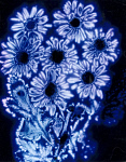 10455801