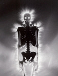 10455504
