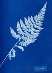 10310406