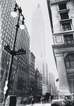 10325407
