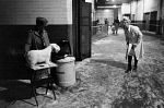 10329108