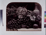10454114
