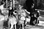 10329017