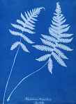 10310422