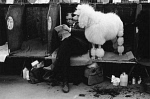 10307835