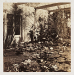 10454144
