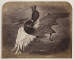 10458452