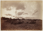 10454466