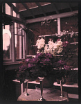 10406171