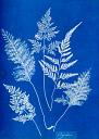 10310375