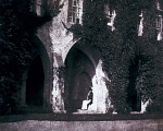 10300078