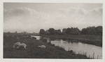 10463982