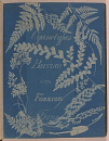 10646391