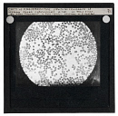 10660705