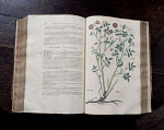 10288853
