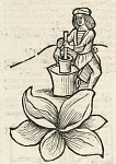 10438576