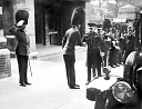 10557005