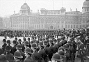 10562428
